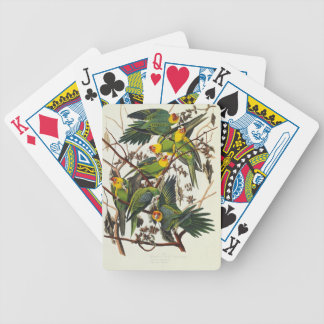 Carolina Parrot - John James Audubon (1827-1838) Bicycle Playing Cards