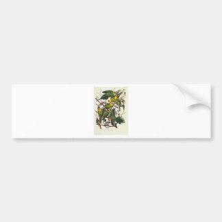 Carolina Parrot - John James Audubon (1827-1838) Bumper Sticker