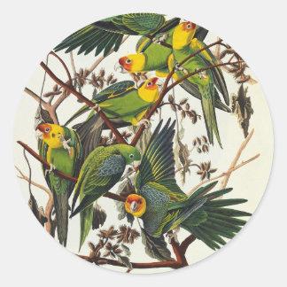 Carolina Parrot - John James Audubon (1827-1838) Classic Round Sticker