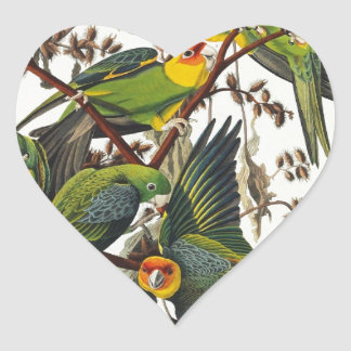 Carolina Parrot - John James Audubon (1827-1838) Heart Sticker