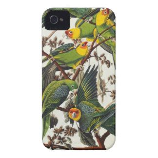 Carolina Parrot - John James Audubon (1827-1838) iPhone 4 Case