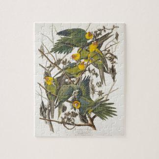 Carolina Parrot - John James Audubon (1827-1838) Jigsaw Puzzle