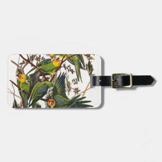 Carolina Parrot - John James Audubon (1827-1838) Luggage Tag