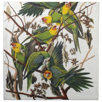 Carolina Parrot - John James Audubon (1827-1838) Napkin