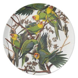 Carolina Parrot - John James Audubon (1827-1838) Plate