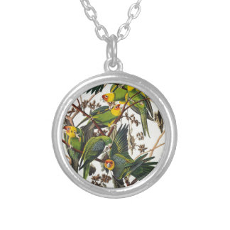 Carolina Parrot - John James Audubon (1827-1838) Silver Plated Necklace