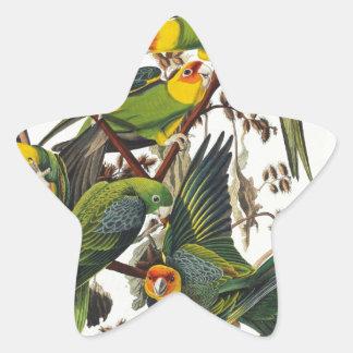 Carolina Parrot - John James Audubon (1827-1838) Star Sticker