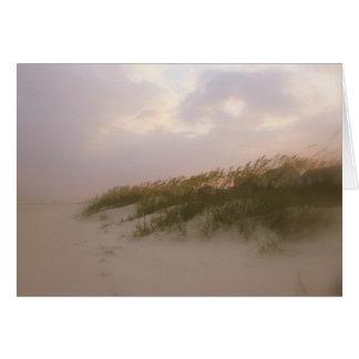 Carolina sand dunes card
