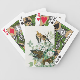 Carolina Turtle Dove, Birds of America by John Jam Bicycle Playing Cards