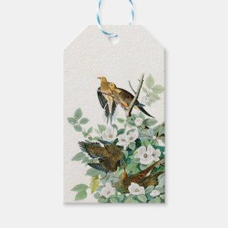 Carolina Turtle Dove, Birds of America by John Jam Gift Tags
