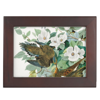 Carolina Turtle Dove, Birds of America by John Jam Keepsake Box