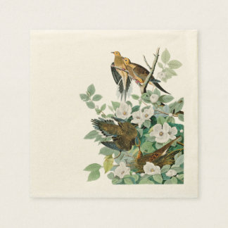 Carolina Turtle Dove, Birds of America by John Jam Paper Napkins