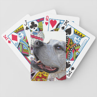 Carousel Ride Poker Deck