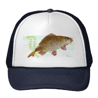 Carp Cap