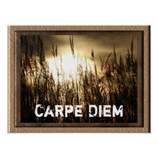 Carpe Diem - art poster print