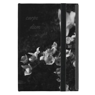 Carpe diem iPad mini cover