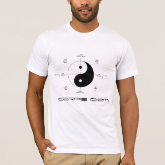 carpe diem #seizetheday t-Shirt