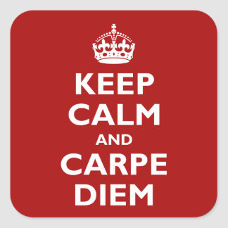 Carpe Diem! Square Sticker
