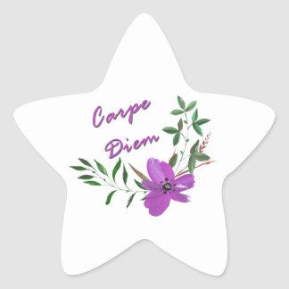 Carpe Diem Star Sticker