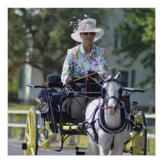 carriage driving poster