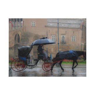carriage with horse canvas print