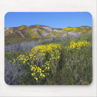 Carrizo Plain National Monument Mouse Pad