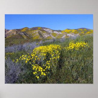 Carrizo Plain National Monument Poster