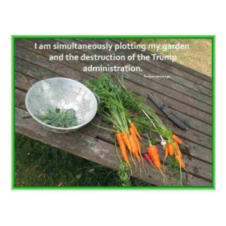 Carrot Gardening & Plotting & Resisting Trump Postcard