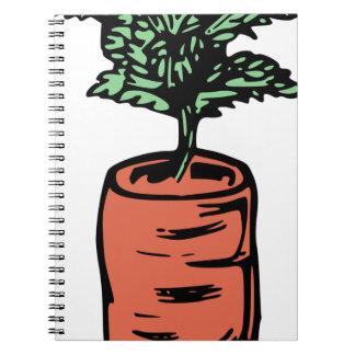 Carrot Notebooks