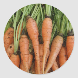 Carrot Stickers