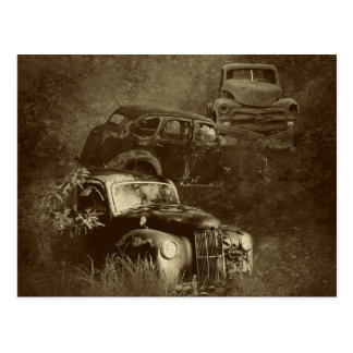 cars in the jungle horizontal postcard