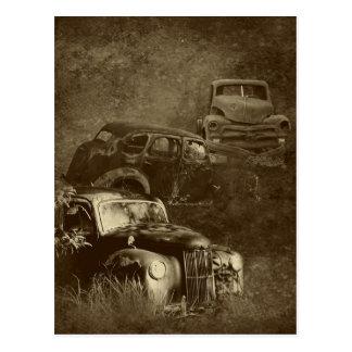 cars in the jungle vertical postcard