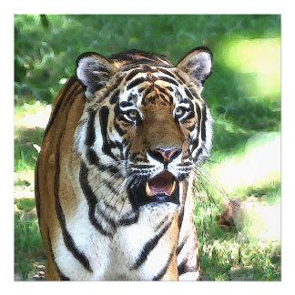 CArt Tiger 5 Photo Print