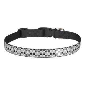 Carta / Medium Dog Collar