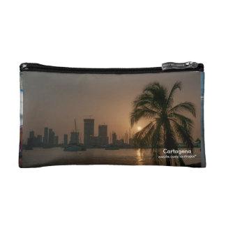 Cartagena Coin Purse or Accesories  Bag