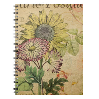 Carte Postale I Notebooks
