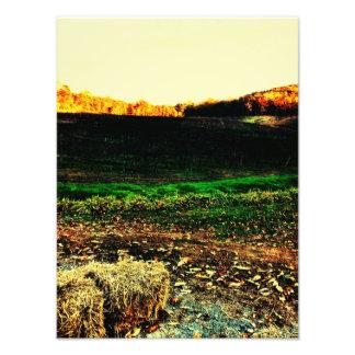 Cartecay Vineyards Photo Print