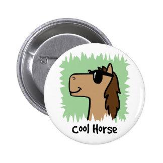 Cartoon Clip Art Cool Horse Wearing Sunglasses Pinback Buttons
