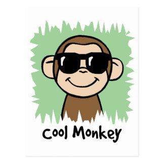 Cartoon Clip Art Cool Monkey with Sunglasses Postcard