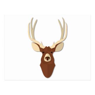Cartoon Deer Stag Head Postcard