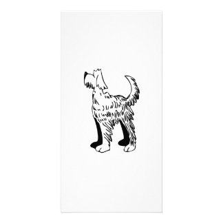 Cartoon Dog Photo Card