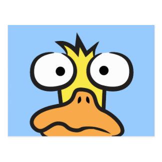 Cartoon Duck Post Cards