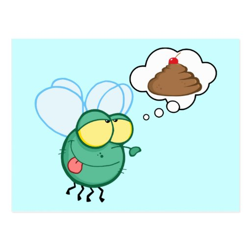 CARTOON FLY DREAMING POO CHERRY TOP FUNNY GROSS DI POST CARDS