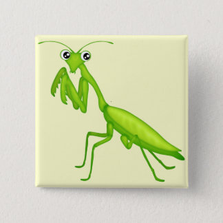Cartoon Green Praying Mantis Flair 15 Cm Square Badge