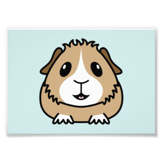 Cartoon Guinea Pig Print (Frames Available!) Photo