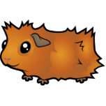 Cartoon Guinea Pig (scruffy) Photo Sculpture Magnet
