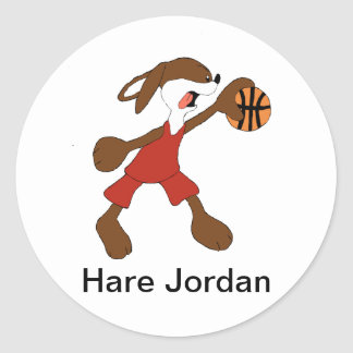 Cartoon Rabbit Michael Jordan Fan Classic Round Sticker