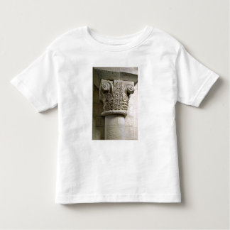 Carved column decorated with croziers and spirals t-shirt