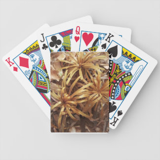 carved wooden flowers bicycle playing cards
