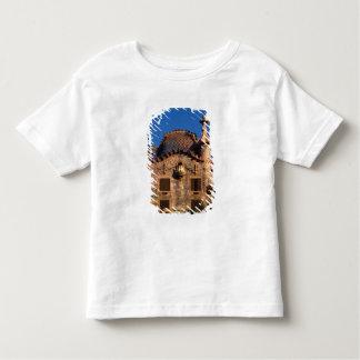 Casa Batilo, Gaudi Architecture, Barcelona, Tees